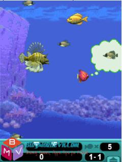 Game cá lớn nuốt cá bé cho điện thoại java